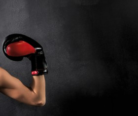 Show biceps female boxer Stock Photo