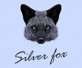 Silver fox head vector illustration 02