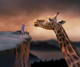 Standing on the cliff to the giraffe to feed the boy Stock Photo
