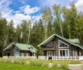 Stock Photo Forest Holiday Villas