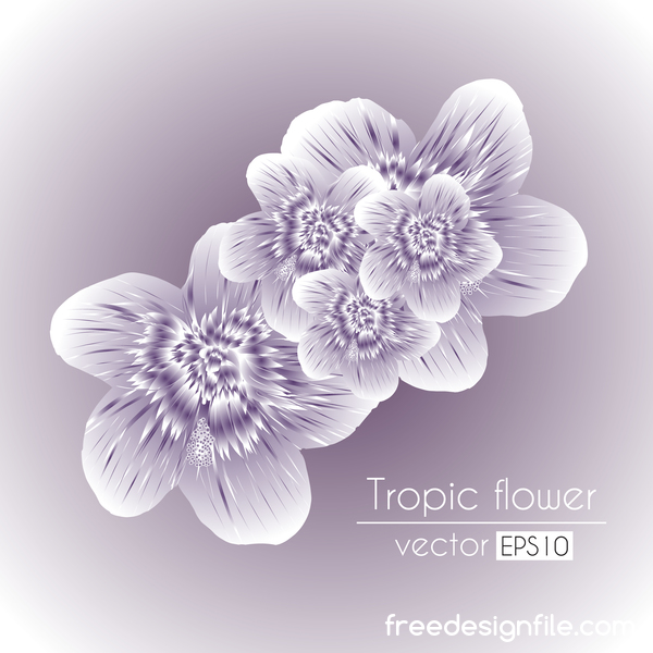Transparent tropical flowers vector