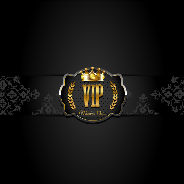 VIP background luxury design vectors 08