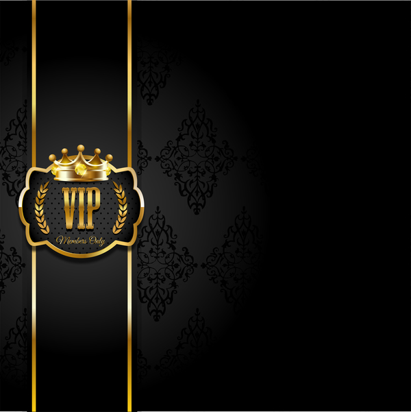 VIP background luxury design vectors 10