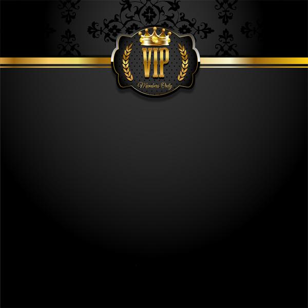 VIP background luxury design vectors 15