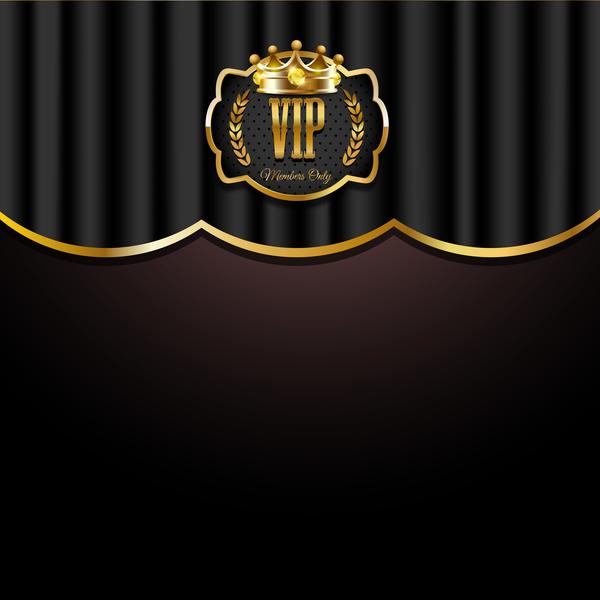 Vip Background Luxury Design Vectors 17