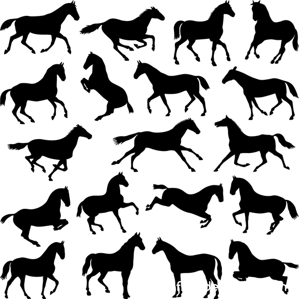 Vector horses silhouette set 04