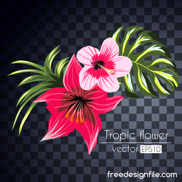Vector tropical flowers illustration vector 08