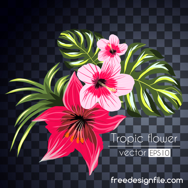 Vector tropical flowers illustration vector 09