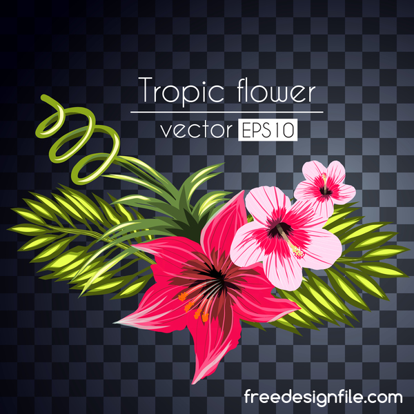 Vector tropical flowers illustration vector 10