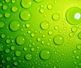 Water Drops Green Background Stock Photo