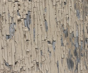 Weathered Wood Textures Stock Photo 06