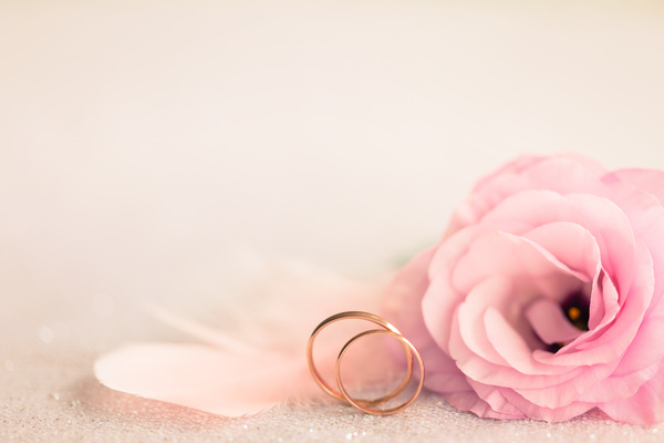 Wedding Background With Gold Rings Gentle Flower And Light