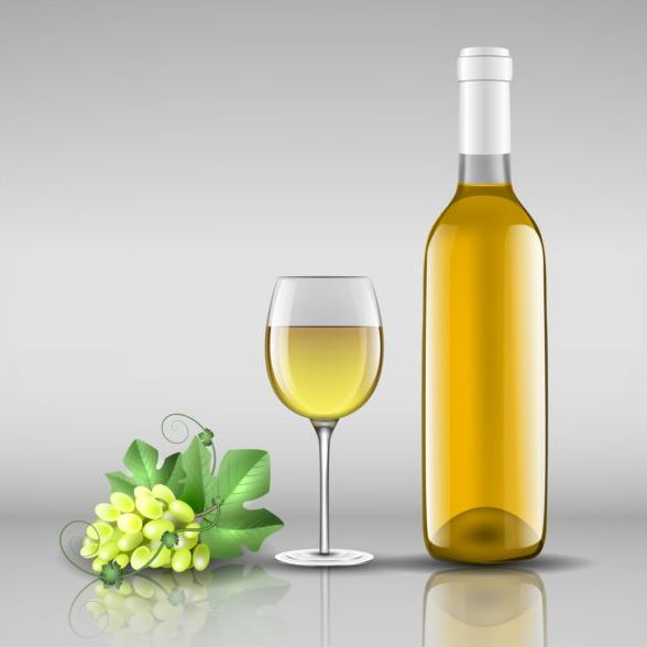 Wine bottle with glass cup vector material 11