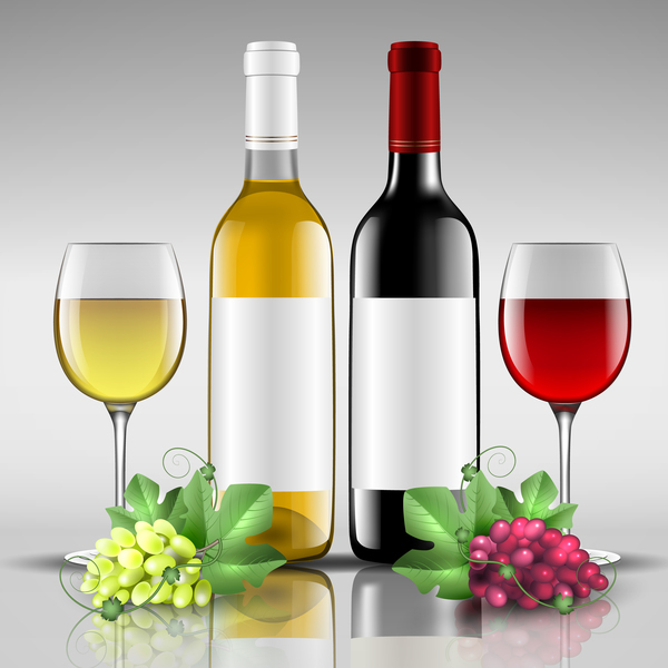 Wine with glass cup vector design 03