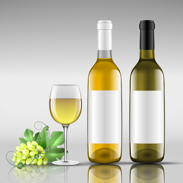 Wine with glass cup vector design 06