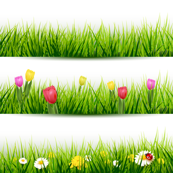 grass borders with flower vector 01