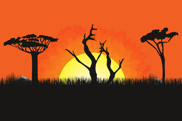 Africa sunset landscape beautiful vector 01