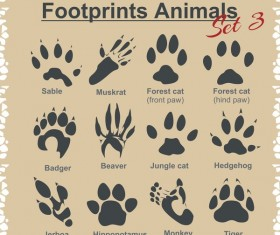 Animal footprints design set vector 01
