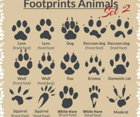 Animal footprints design set vector 03