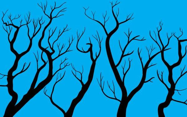 Autumn trees with blue background vector