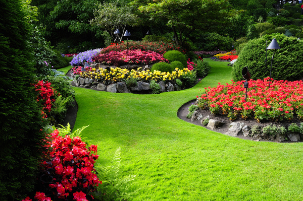Beautiful garden Stock Photo Backgrounds stock photo free download