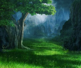 Beautiful mystery forest Stock Photo 01
