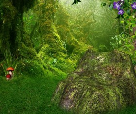 Beautiful mystery forest Stock Photo 04