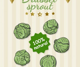 Brussel sprout poster retro vector