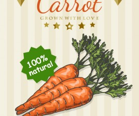 Carrot poster template retro vector