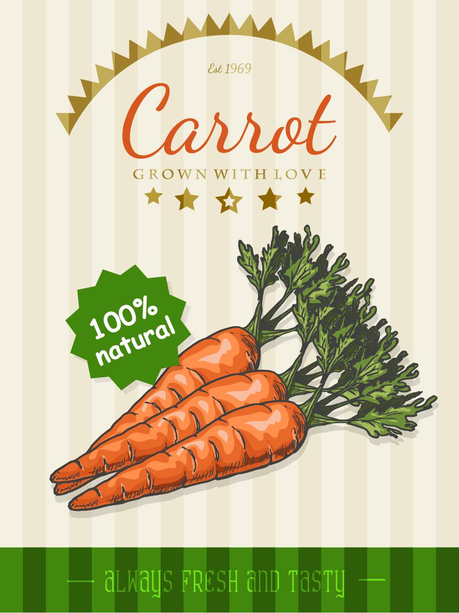 Carrot poster template retro vector