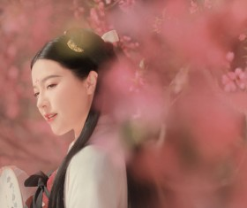 Chinese classical beauty HD picture