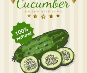 Cucumber poster vector