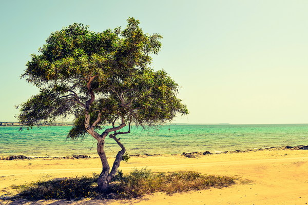 Cyprus seaside landscape photography HD picture