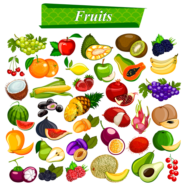 Different fruits vector material