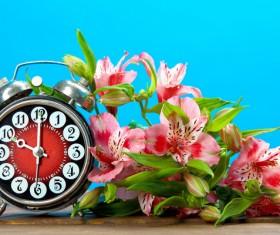 Flowers and alarm clock Stock Photo