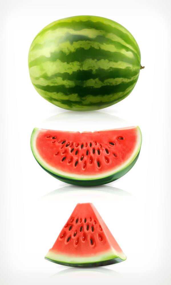 Fresh juicy watermelon with ripe vector material 06