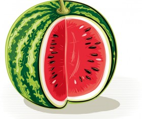 Fresh juicy watermelon with ripe vector material 08