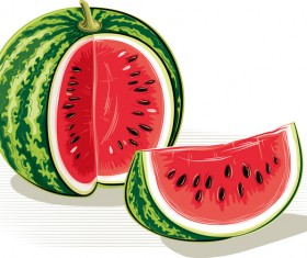 Fresh juicy watermelon with ripe vector material 09