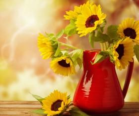 Golden sunflower flower arrangement Stock Photo