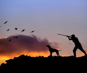 Hunting the man with the hound to fly the bird Stock Photo
