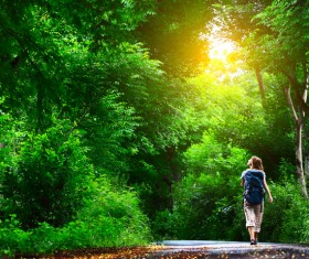 Lush woods and backpackers HD picture