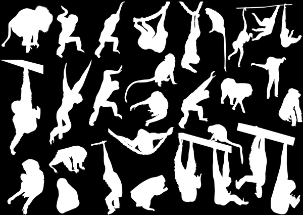 Monkey white silhouette vector set 01