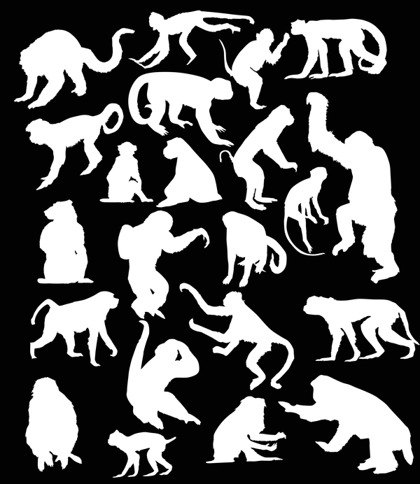 Monkey white silhouette vector set 02