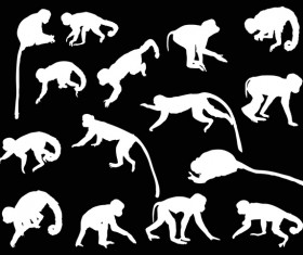 Monkey white silhouette vector set 03