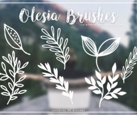 Olesia Photoshop Brushes