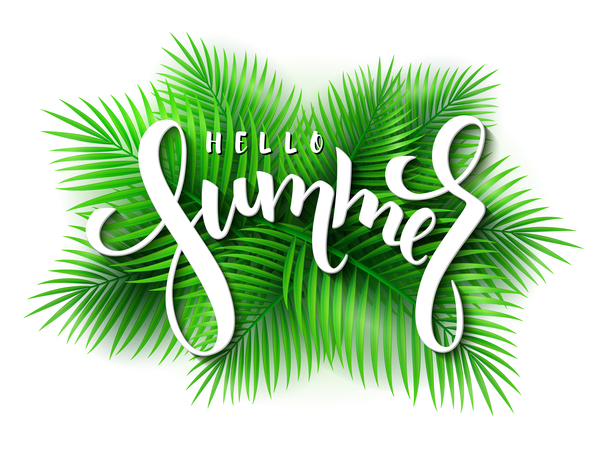 Palm leaves with summer background vector