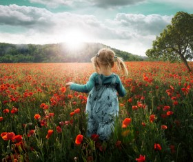 Poppy flowers with little girl Stock Photo