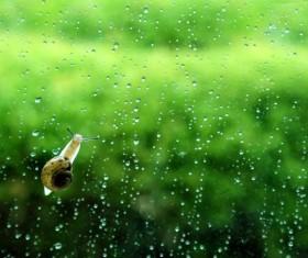 Rain beautiful sad Stock Photo
