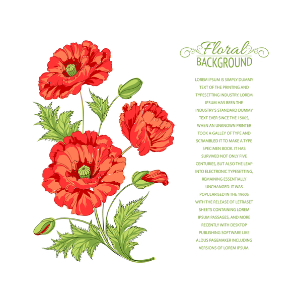 Red flower with background for you text vector