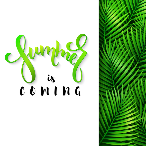 Summer background with palm leaves vector